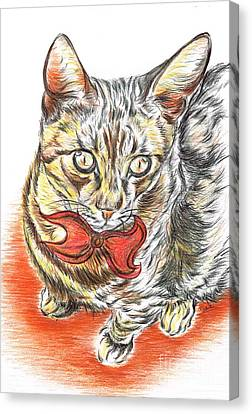 Charming Cat Canvas Print by Teresa White