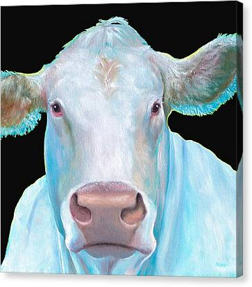 Charolais Cow Painting On Black Background Canvas Print by Jan Matson