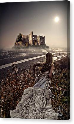 Chasing The Dreams Canvas Print