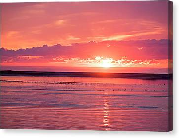 Chatham Ma Cape Cod Sunrise Canvas Print by Toby McGuire