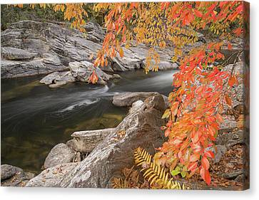 Chattooga River 16 Canvas Print