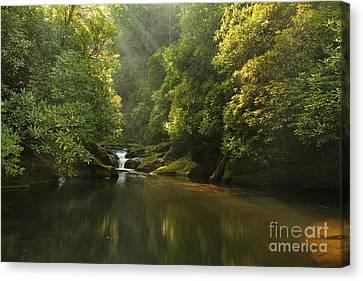 Chattooga River At Dawn Canvas Print by Matt Tilghman