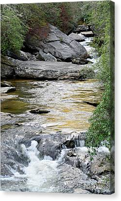 Chattooga River In Sc Canvas Print by Bruce Gourley