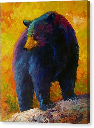 Checking The Smorg - Black Bear Canvas Print by Marion Rose