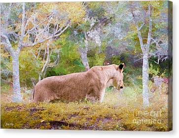 Checking Things Out Canvas Print by Judy Kay