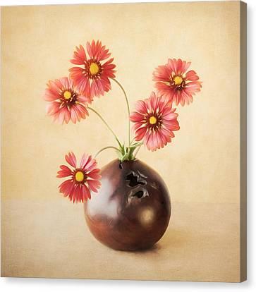 Cheerful Daisies Canvas Print