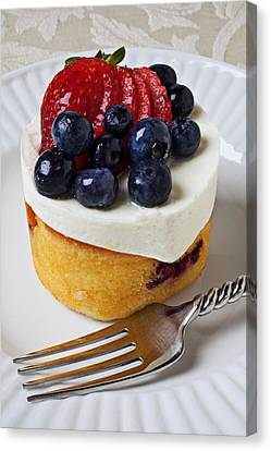 Cheese Cream Cake With Fruit Canvas Print by Garry Gay