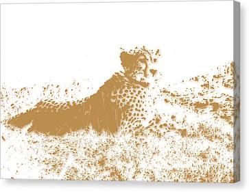 Growl Canvas Print - Cheetah 4 by Joe Hamilton