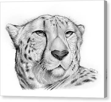 Cheetah Canvas Print by Greg Joens
