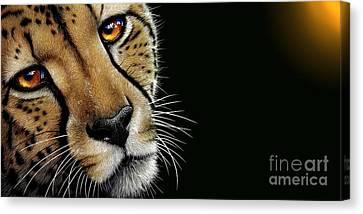 Cheetah Canvas Print - Cheetah by Jurek Zamoyski
