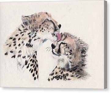 Cheetah Love Canvas Print by Marqueta Graham