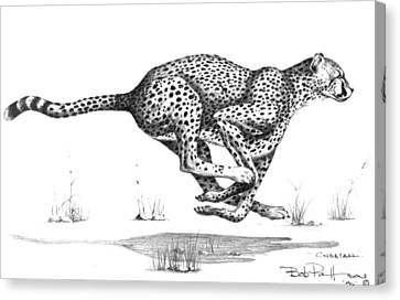 Cheetah On The Kill Canvas Print by Bob Patterson