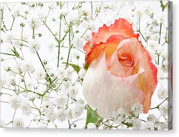 Cherish Canvas Print
