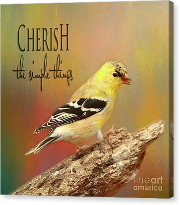 Canvas Print featuring the photograph Cherish by Darren Fisher