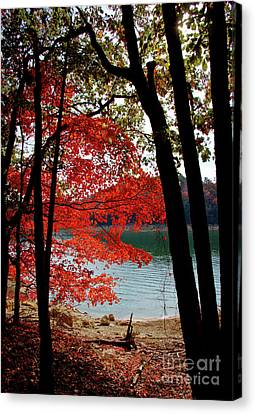 Canvas Print featuring the photograph Cherokee Lake Color by Douglas Stucky