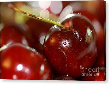 Cherries  Canvas Print by A New Focus Photography