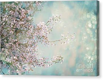 Canvas Print featuring the photograph Cherry Blossom Dreams by Linda Lees