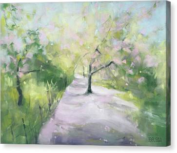 Cherry Blossom Tree Central Park Bridle Path Canvas Print by Beverly Brown