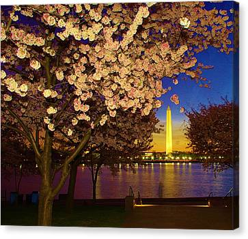 Cherry Blossom Washington Monument Canvas Print