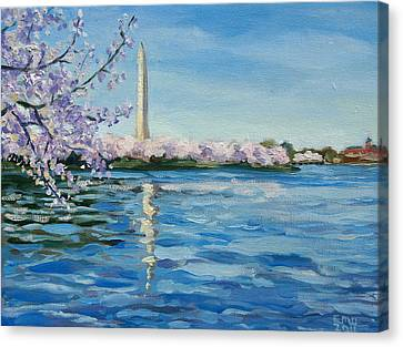 Cherry Blossoms Canvas Print by Edward Williams