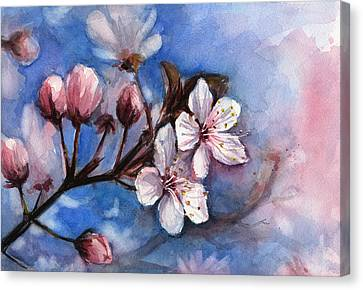 Flower Art Canvas Print - Cherry Blossoms  by Olga Shvartsur