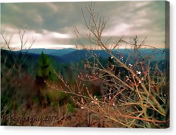 Smokey Mountain Drive Canvas Print - Cherry Blossoms On Sky Line Drive by Melissa Hicks