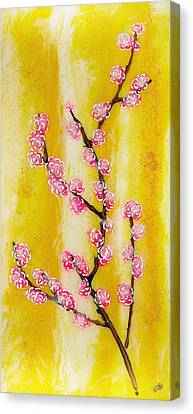 Cherry Blossoms Canvas Print by Paul Tokarski