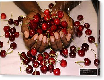 Cherry In The Hands Canvas Print by Paul SEQUENCE Ferguson             sequence dot net