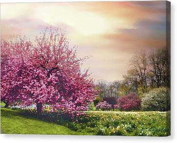 Canvas Print featuring the photograph Cherry Orchard Hill by Jessica Jenney