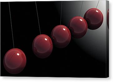 Cherry Red Knockers Canvas Print by Richard Rizzo