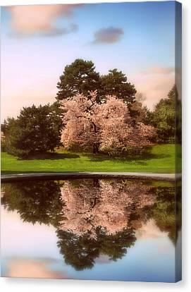 Cherry Tree Fountain  Canvas Print
