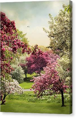 Crabapple Tree Grove Canvas Print