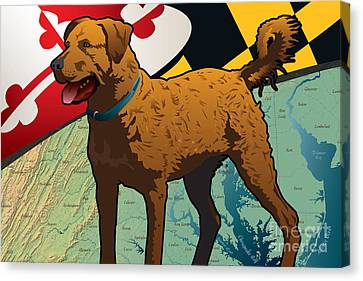 Chesapeake Bay Retriever Of Maryland  Canvas Print by Joe Barsin