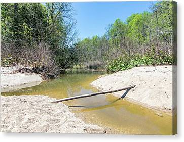 Canvas Print featuring the photograph Chesapeake Tributary by Charles Kraus