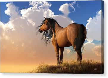 Chestnut Horse Canvas Print by Daniel Eskridge