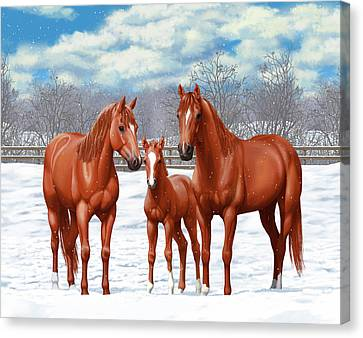 Chestnut Horse Canvas Print - Chestnut Horses In Winter Pasture by Crista Forest