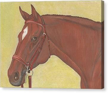 Chestnut Hunter Canvas Print by Elizabeth Farrell