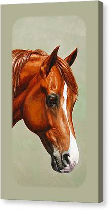Chestnut Morgan Horse Phone Case Canvas Print by Crista Forest