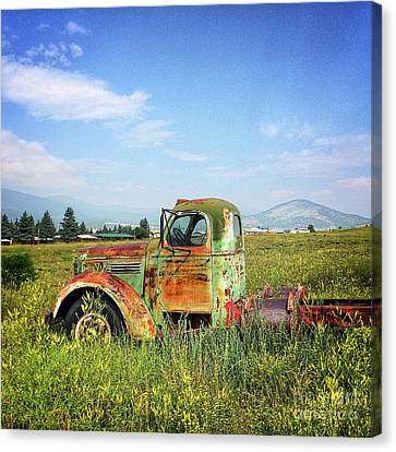 Chevy In A Field Canvas Print by Terry Rowe
