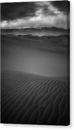 Chewing Sand Canvas Print