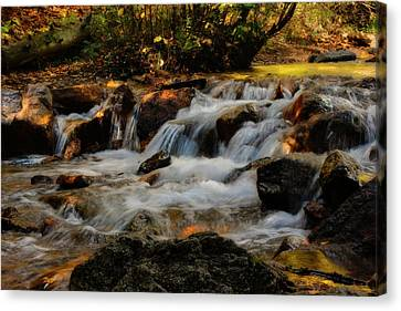 Canvas Print featuring the photograph Cheyenne Canyon Autumn by Ellen Heaverlo