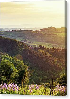 Chianti Italy Rolling Hillside At Sunset Canvas Print