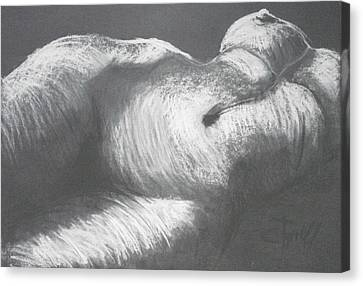 Chiaroscuro - Torso Canvas Print by Carmen Tyrrell