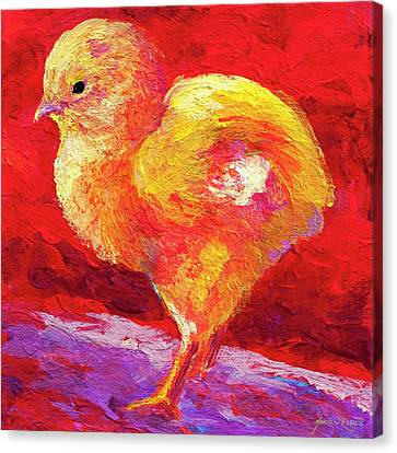 Chic Flic Iv Canvas Print by Marion Rose