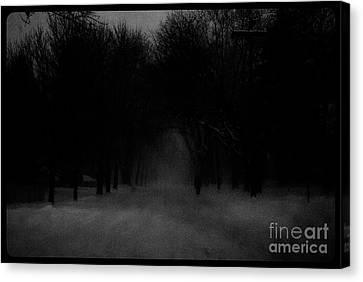 Chicago Blizzard - Monochrome Canvas Print by Frank J Casella