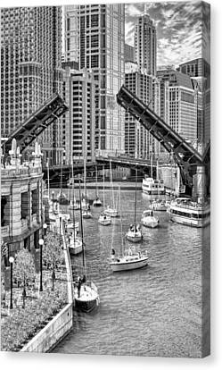 Chicago River Boat Migration In Black And White Canvas Print by Christopher Arndt