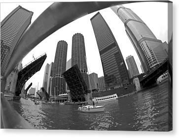 Chicago Sailboats Heading To Harbor Canvas Print by Sven Brogren