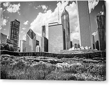 Chicago Skyline At Lurie Garden Black And White Photo Canvas Print by Paul Velgos