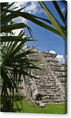 Chichen Itza 2 Canvas Print by Douglas Barnett