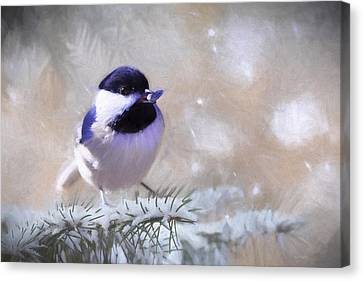 Chickadee And The Sunflower Seed Canvas Print by Barbara Hymer